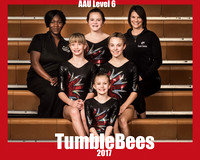 Tumblebees Ultimate Gym